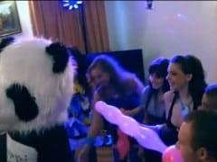 Vysokoškolské orgie s pandou