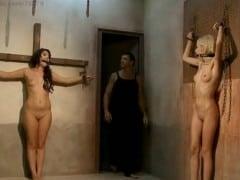 Trýznění na kříži
