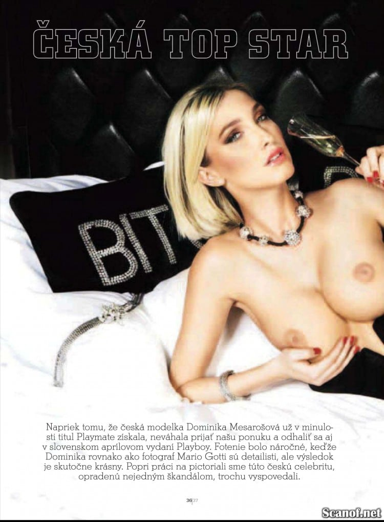 Playboy_2012_04_Slovakia_Scanof.net_038