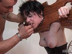 Zkrocení zlé ženy (HD)