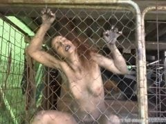 Bestie v kleci – horror porn